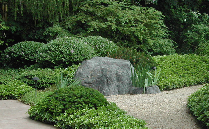Maintenance services niwa design studio ltd for Japanese garden bushes